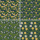 Naadloze bloemenpatronen Royalty-vrije Stock Foto's