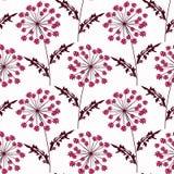 Naadloze bloemenpatroon heldere bloemen op een witte achtergrond Stock Afbeelding