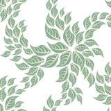 Naadloze Bloemenpatroonachtergrond - Illustratie vector illustratie