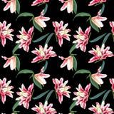 Naadloze bloemenpatroonlelies Royalty-vrije Stock Foto's