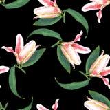 Naadloze bloemenpatroonlelies Stock Fotografie