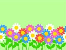 Naadloze bloemgrens Royalty-vrije Stock Afbeeldingen