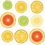 Naadloze citrusvrucht Stock Foto's
