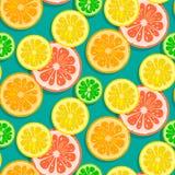 Naadloze citrusvruchtenvector als achtergrond Stock Foto