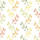 Naadloze de herfst organische bloemenachtergrond Kleurenbladeren op wit Stock Illustratie