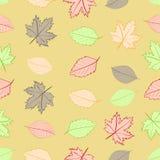Naadloze de herfstbladeren Royalty-vrije Stock Foto