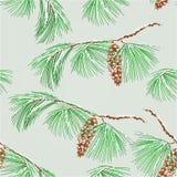Naadloze de pijnboom en de sneeuwvector van de textuurtak Stock Foto