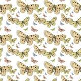 Naadloze de vlinders herhalen patroonachtergrond Royalty-vrije Stock Foto