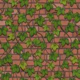 Naadloze die vector van een muur van rode die bakstenen wordt gemaakt met klimop worden verdraaid vector illustratie