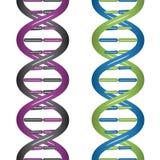 Naadloze DNA Royalty-vrije Stock Foto