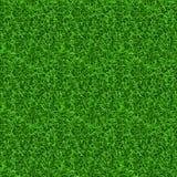 Naadloze gras vectortextuur Stock Afbeelding