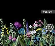 Naadloze grens van wilde bloemen Vector illustratie royalty-vrije illustratie