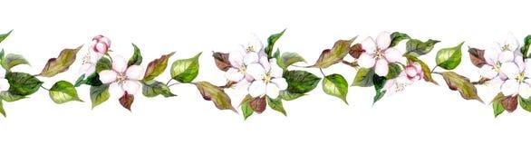 Naadloze grenzen met appelbloemen vector illustratie