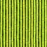 Naadloze groene bamboetextuur Royalty-vrije Stock Afbeelding