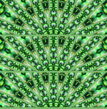 Naadloze halfronde ornamenten groene purple Royalty-vrije Stock Afbeelding