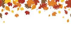 Naadloze Heldere Daling Autumn Leaves Border 1 royalty-vrije illustratie