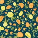 Naadloze herhaalt het citroen oranje blad patroonontwerp royalty-vrije illustratie