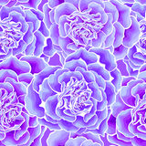 Naadloze het hart van rozen Stock Afbeeldingen