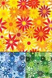 Naadloze het herhalen bloemen Royalty-vrije Stock Afbeelding