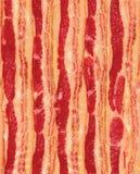 Naadloze het Herhalen Stroken van Bacon Stock Fotografie
