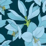 Naadloze het patroon blauwe marine van de Hippeastrumamaryllis vector illustratie