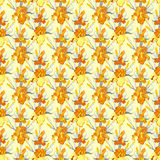 Naadloze het patroonachtergrond van de geel lisbloem Stock Foto