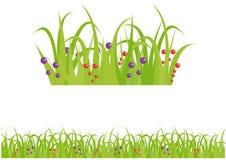 Naadloze het patroonachtergrond van het gras en van de bes Stock Foto's