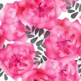 Naadloze het patroonachtergrond van waterverfbloemen Royalty-vrije Stock Foto
