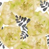 Naadloze het patroonachtergrond van waterverfbloemen Royalty-vrije Stock Afbeeldingen