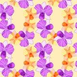 Naadloze het patroonviooltje en sinaasappel van Dendrobiumorchidea Stock Fotografie