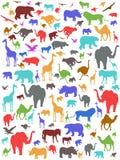 Naadloze kleurrijke Afrikaanse dierenachtergrond Stock Afbeelding