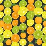 Naadloze kleurrijke die achtergrond van citrusvruchten in vlakke desig wordt gemaakt Stock Foto