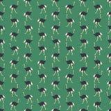 Naadloze kleurrijke die achtergrond van struisvogels in vlak ontwerp wordt gemaakt vector illustratie