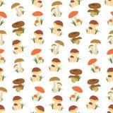 Naadloze kleurrijke die achtergrond van verschillend soort paddestoel wordt gemaakt vector illustratie