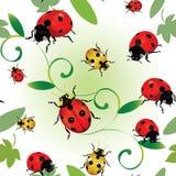 Naadloze lieveheersbeestjes stock illustratie