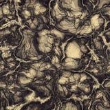Naadloze marmeren textuur Royalty-vrije Stock Foto's