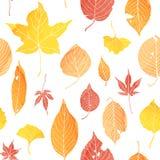 Naadloze patern van de herfstbladeren Royalty-vrije Stock Afbeeldingen