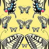 Naadloze patroon machaon vlinder dicht omhooggaand Europa Vectorillus vector illustratie