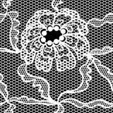 Naadloze patroon van de kant het vectorstof Royalty-vrije Stock Afbeeldingen