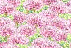Naadloze patroon van de lente het tot bloei komende bomen Royalty-vrije Stock Foto's