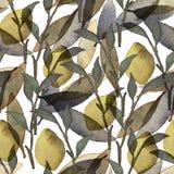 Naadloze patroon van het waterverf het bloemenbehang vector illustratie
