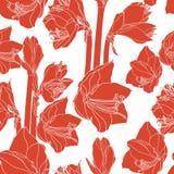 Naadloze patroon van Hippeastrum het lilly bloeiende bloemen stock illustratie