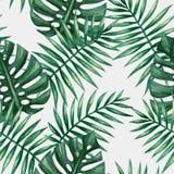 Naadloze patroon van waterverf het tropische palmbladen Stock Afbeeldingen