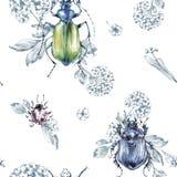 Naadloze patroon vliegende kevers met bloemen en installaties De zomer en de lentewaterverfillustratie entomologie wildlife royalty-vrije illustratie