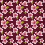 Naadloze patroonachtergrond met kersenbloesem Stock Afbeeldingen