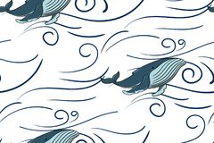 Naadloze patroonoverzees en blauwe vinvis Op een witte achtergrond vector illustratie
