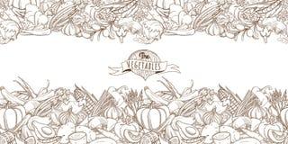 Naadloze plantaardige grens van de overzichts de hand getrokken schets (vlakke stijl, Stock Afbeeldingen