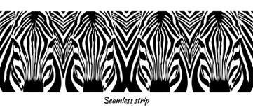 Naadloze strook De hoofden van zebras sluiten omhoog royalty-vrije illustratie