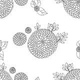Naadloze textuur met asters Royalty-vrije Stock Afbeelding