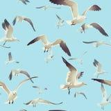Naadloze textuur met een troep van zeemeeuwen het vliegen Stock Afbeeldingen